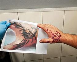 Tattooshop Leeuwarden ontwerpen